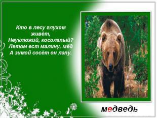 Кто в лесу глухом живёт,Неуклюжий, косолапый?Летом ест малину, мёдА зимой сосёт