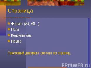 СтраницаФормат (А4, А5…)ПоляКолонтитулыНомерТекстовый документ состоит из страни