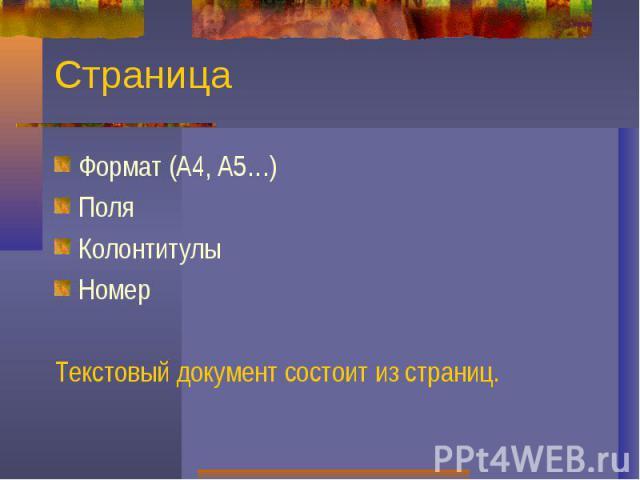 СтраницаФормат (А4, А5…)ПоляКолонтитулыНомерТекстовый документ состоит из страниц.