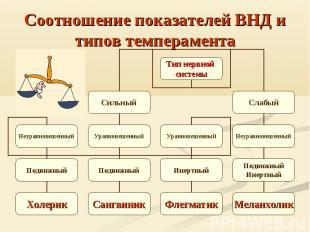 Соотношение показателей ВНД и типов темперамента