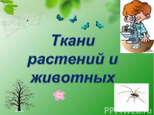 Ткани растений и животных