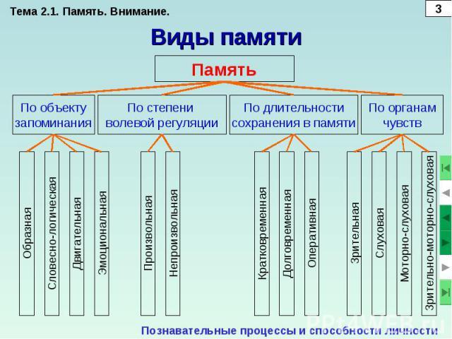 Тема 2.1. Память. Внимание.Виды памятиПознавательные процессы и способности личности