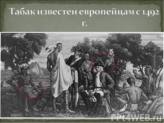 Табак известен европейцам с 1492 г.