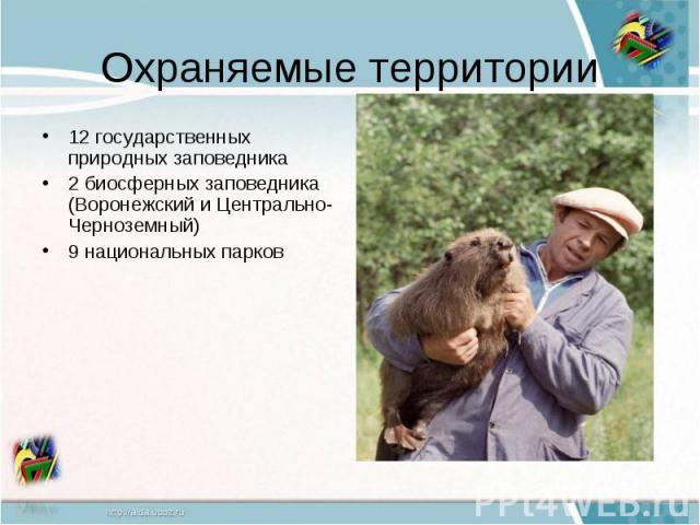 Охраняемые территории12 государственных природных заповедника2 биосферных заповедника (Воронежский и Центрально-Черноземный)9 национальных парков
