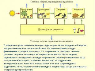 В конкретных цепях питания можно проследить и рассчитать передачу той энергии, к