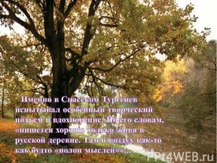 Именно в Спасском Тургенев испытывал особенный творческий подъем и вдохновение.
