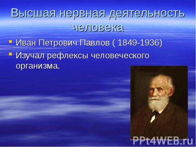 Высшая нервная деятельность человекаИван Петрович Павлов ( 1849-1936)Изучал рефлексы человеческого организма.