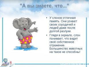 """""""А вы знаете, что...""""У слонов отличная память. Они узнают своих сородичей и люде"""