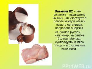 Витамин В2 – это витамин – «двигатель жизни». Он участвует в работе каждой клетк