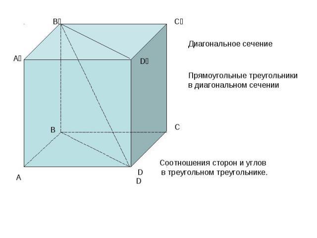 Диагональное сечение Прямоугольные треугольники в диагональном сеченииСоотношения сторон и углов в треугольном треугольнике.