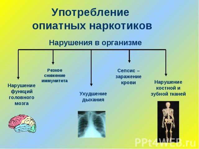 Употребление опиатных наркотиковНарушения в организме