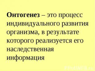 Онтогенез – это процесс индивидуального развития организма, в результате которог