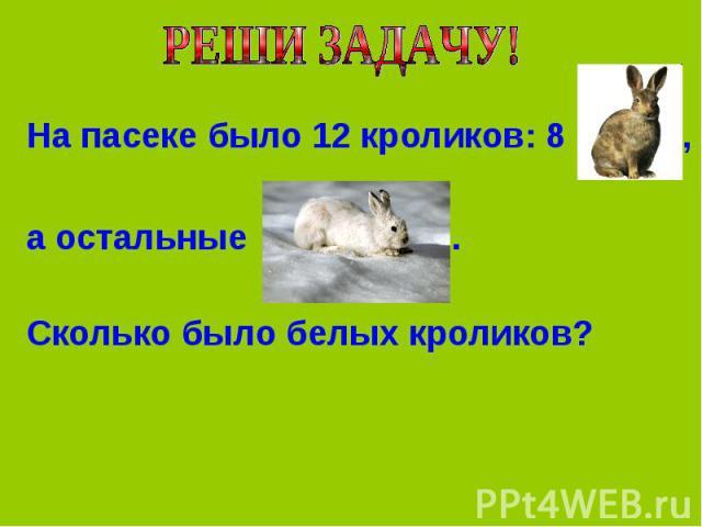 На пасеке было 12 кроликов: 8 ,а остальные . Сколько было белых кроликов?