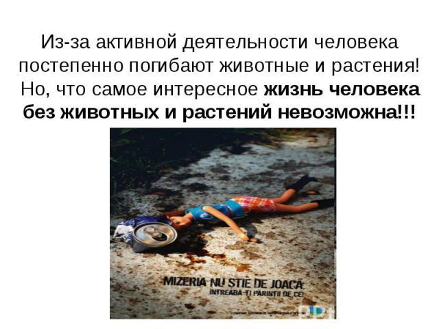 Из-за активной деятельности человека постепенно погибают животные и растения!Но, что самое интересное жизнь человека без животных и растений невозможна!!!