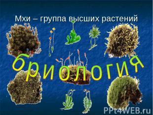 Мхи – группа высших растенийбриология