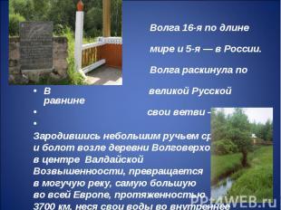 Волга 16-я по длине река в мире и 5-я — в России. Волга раскинула по В великой Р