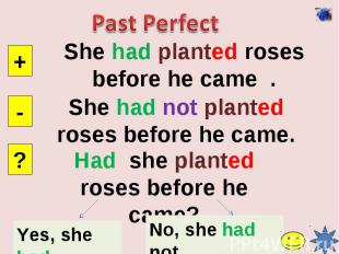 Past PerfectShe had planted roses before he came .She had not planted roses befo