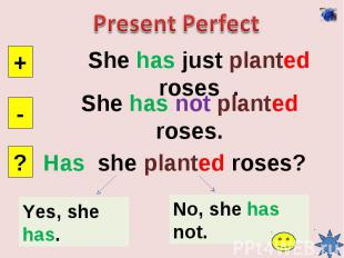 Present PerfectShe has just planted roses .She has not planted roses.Has she pla