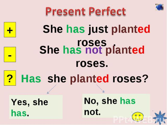 Present PerfectShe has just planted roses .She has not planted roses.Has she planted roses?