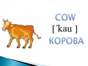 COWКОРОВА