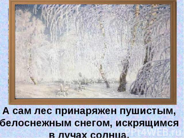 А сам лес принаряжен пушистым, белоснежным снегом, искрящимся в лучах солнца.