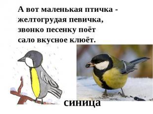 А вот маленькая птичка -желтогрудая певичка,звонко песенку поётсало вкусное клюё