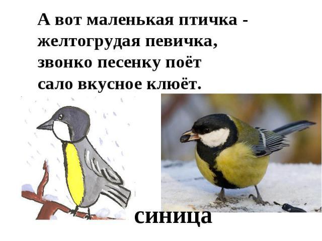 А вот маленькая птичка -желтогрудая певичка,звонко песенку поётсало вкусное клюёт.синица
