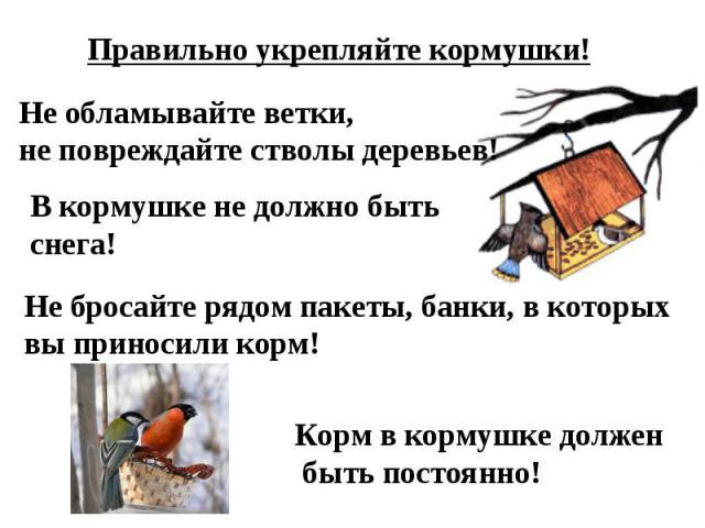 Правильно укрепляйте кормушки!Не обламывайте ветки,не повреждайте стволы деревьев!В кормушке не должно быть снега!Не бросайте рядом пакеты, банки, в которыхвы приносили корм!Корм в кормушке должен быть постоянно!