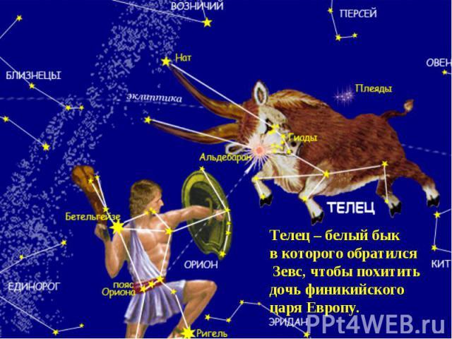 Телец – белый быкв которого обратился Зевс, чтобы похититьдочь финикийского царя Европу.