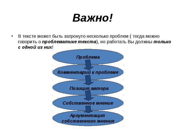Важно!В тексте может быть затронуто несколько проблем ( тогда можно говорить о проблематике текста), но работать Вы должны только с одной из них!