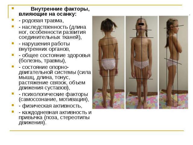 Внутренние факторы, влияющие на осанку:- родовая травма, - наследственность (длина ног, особенности развития соединительных тканей), - нарушения работы внутренних органов, - общее состояние здоровья (болезнь, травмы), - состояние опорно-двигательной…