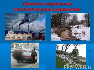 Причины нарушения экологического равновесия