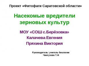 Проект «Фитофаги Саратовской области» Насекомые вредители зерновых культур МОУ «