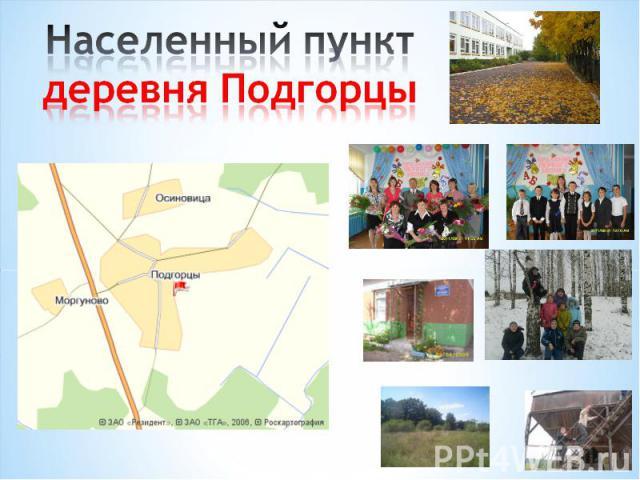 Населенный пунктдеревня Подгорцы