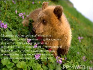 Медведь - противоречивый символ, он ассоциируется одновременно с добродушием и я