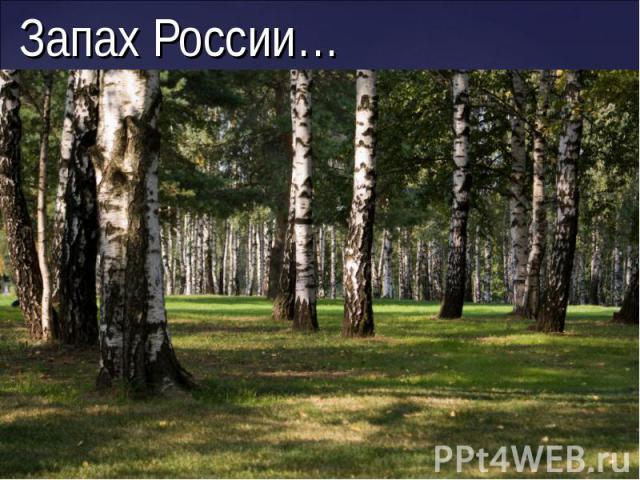 Запах России…