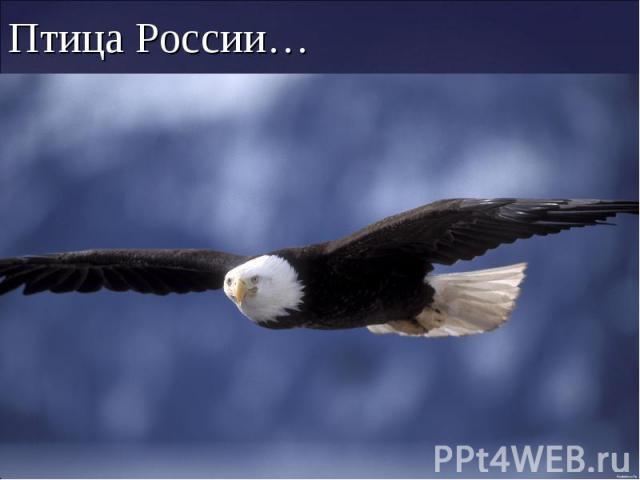 Птица России…
