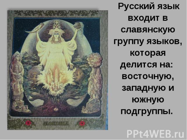 Русский язык входит в славянскую группу языков, которая делится на: восточную, западную и южную подгруппы.