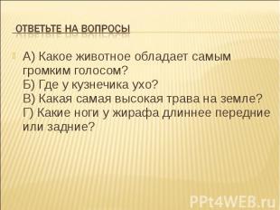 Ответьте на вопросыА) Какое животное обладает самым громким голосом? Б) Где у ку