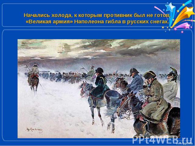 Начались холода, к которым противник был не готов. «Великая армия» Наполеона гибла в русских снегах.