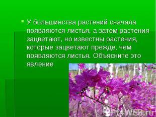 У большинства растений сначала появляются листья, а затем растения зацветают, но