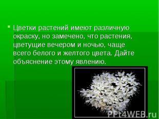 Цветки растений имеют различную окраску, но замечено, что растения, цветущие веч