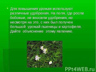 Для повышения урожая используют различные удобрения. На поля, где росли бобовые,
