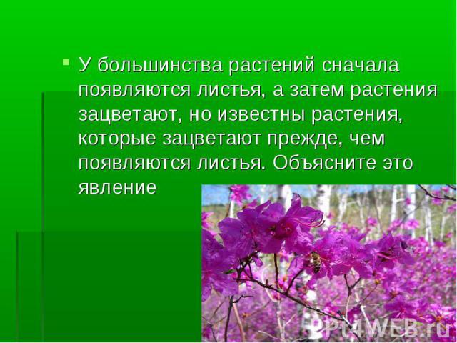 У большинства растений сначала появляются листья, а затем растения зацветают, но известны растения, которые зацветают прежде, чем появляются листья. Объясните это явление