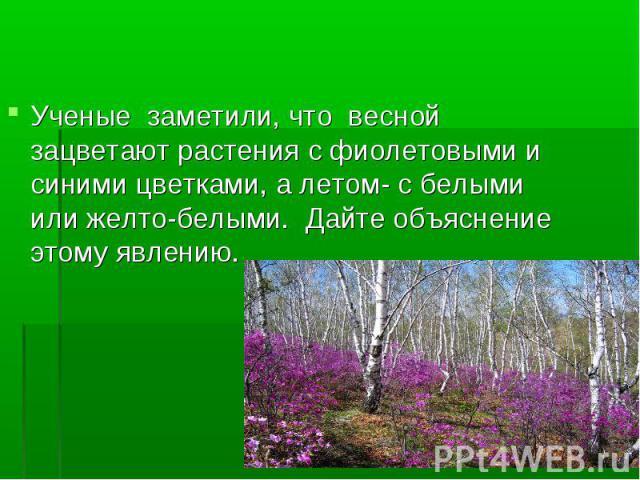 Ученые заметили, что весной зацветают растения с фиолетовыми и синими цветками, а летом- с белыми или желто-белыми. Дайте объяснение этому явлению.