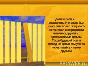 Дети играли и веселились, Некрасов был счастлив, но его отец этого не понимал и