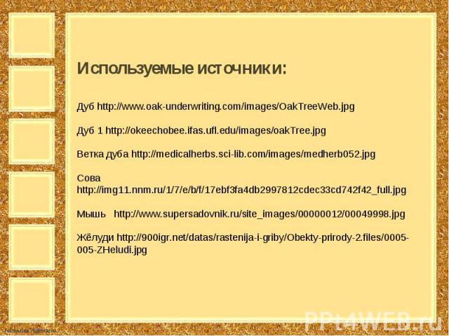 Используемые источники:Дуб http://www.oak-underwriting.com/images/OakTreeWeb.jpg Дуб 1 http://okeechobee.ifas.ufl.edu/images/oakTree.jpg Ветка дуба http://medicalherbs.sci-lib.com/images/medherb052.jpg Сова http://img11.nnm.ru/1/7/e/b/f/17ebf3fa4db2…