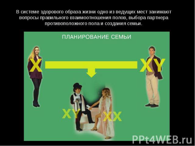 В системе здорового образа жизни одно из ведущих мест занимают вопросы правильного взаимоотношения полов, выбора партнера противоположного пола и создания семьи.