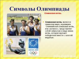 Символы Олимпиады Оливковая ветвь.Оливковая ветвьявляется символом мира, переми