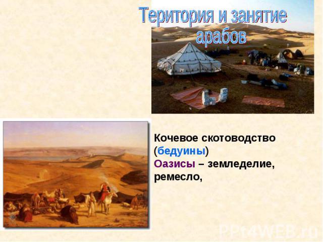 Територия и занятие арабовКочевое скотоводство (бедуины)Оазисы – земледелие, ремесло,